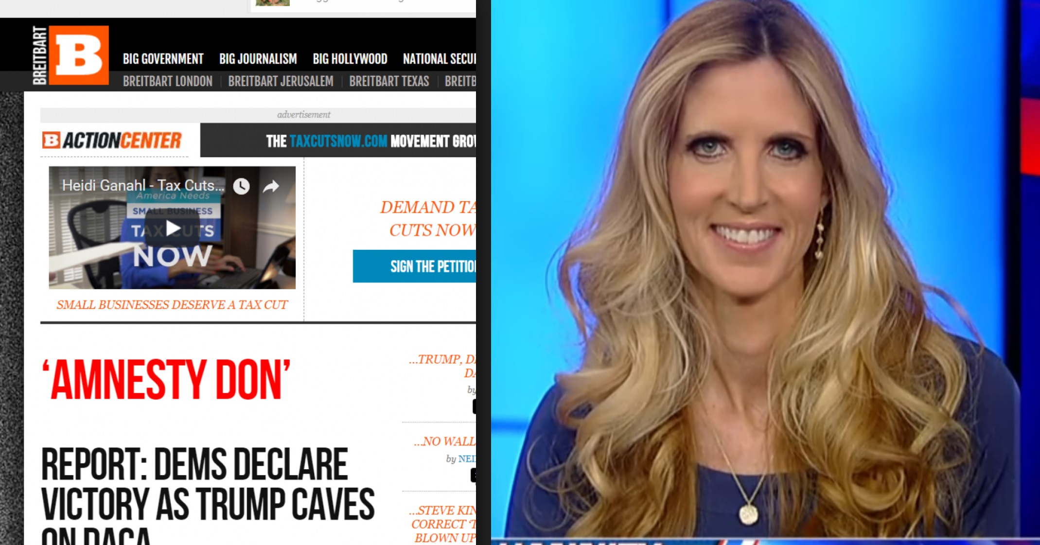 breitbart turns on amnesty don ann coulter calls for his
